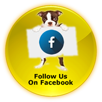 fido to go facebook button
