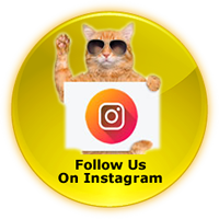 fido to go instagram button